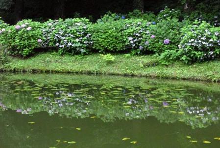 星野池の山 155