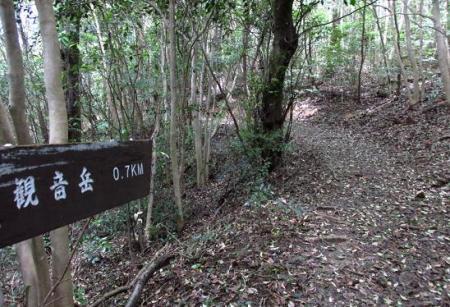 小岱山 114