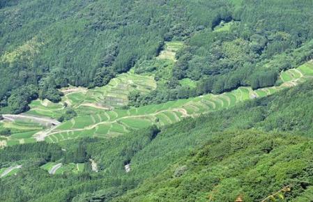 八幡岳 024