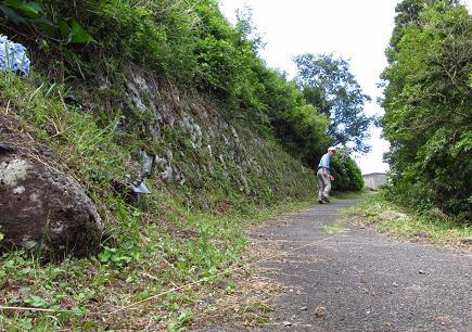 八幡岳 007