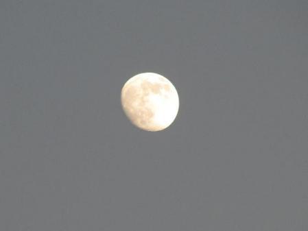 お月様と温泉 006