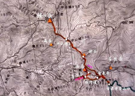 キツネ地図20110808091859f5bs