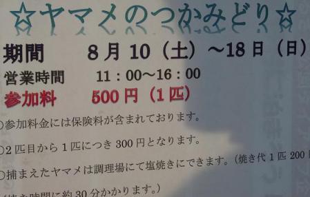 花火 051