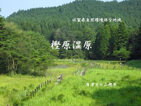 樫原湿原 002