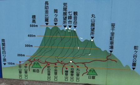 小岱山 キノコ 230