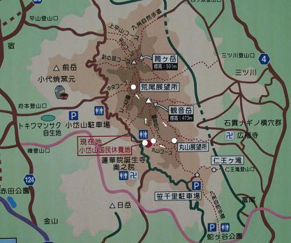 小岱山 キノコ 229