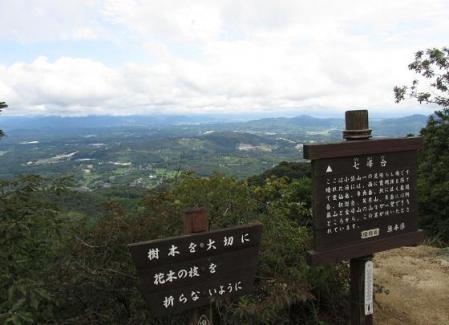 小岱山 キノコ 092