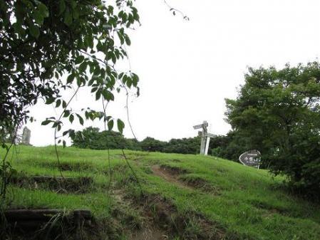小岱山 キノコ 077