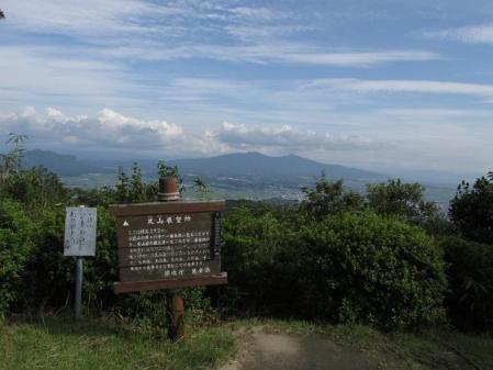 小岱山 キノコ 193