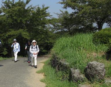 清水山 071