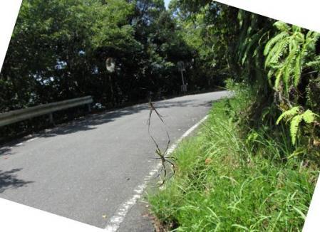 清水山 091