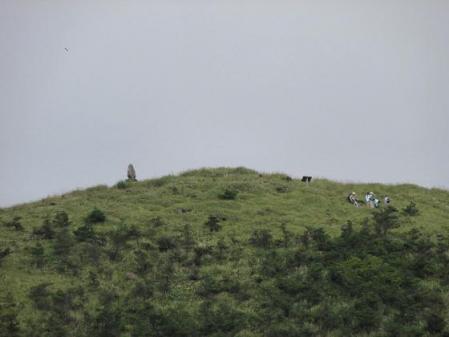 再び天山へ雨山 114
