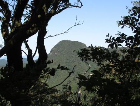 経ヶ岳 025