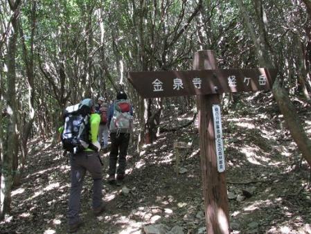 経ヶ岳 061