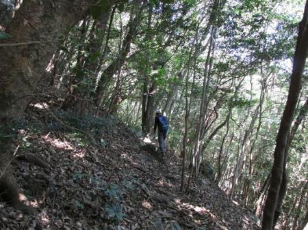 経ヶ岳 067