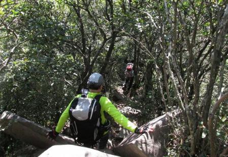 経ヶ岳 130