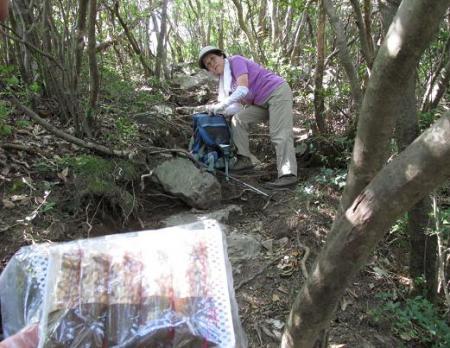 経ヶ岳 159