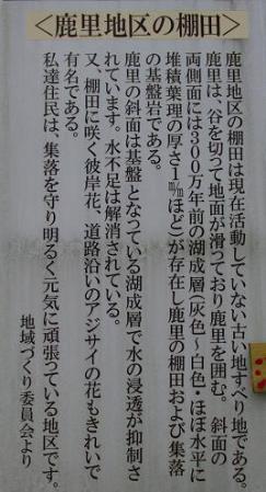 棚田 001