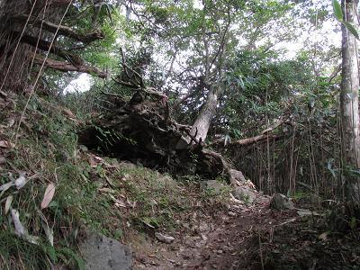 釈迦岳 027
