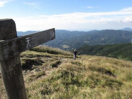 ムラサキセンブリ天山 103