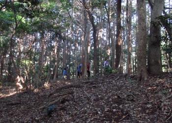 松尾ちゃんと登る清水山 048