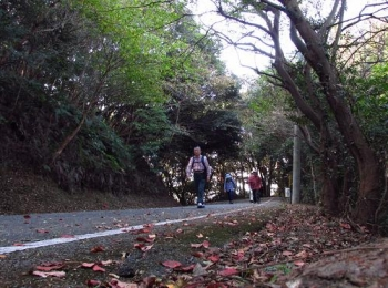 松尾ちゃんと登る清水山 068