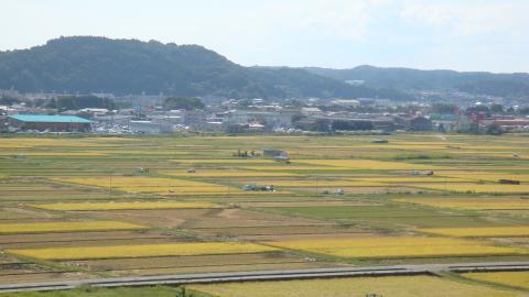 『神谷米」の生産地