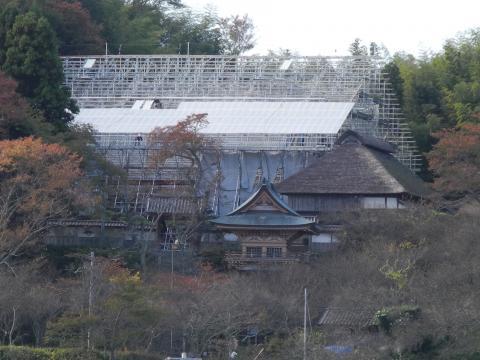 素屋根に覆われた專称寺