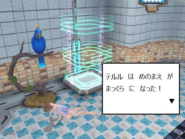 2011_2_7_4.jpg