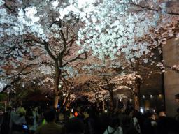 GRS京都2010 記念写真集1