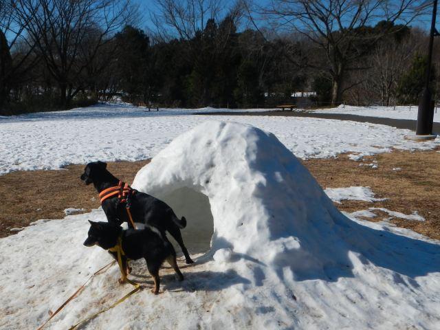 残雪の雪景色