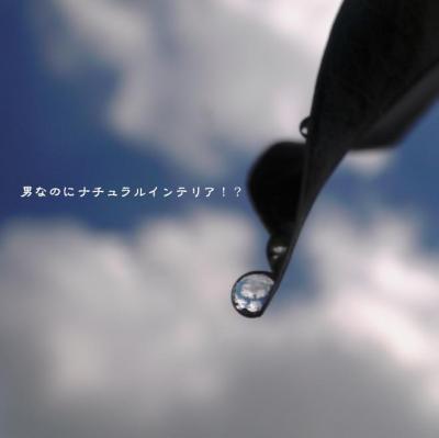139_convert_20110826222023.jpg