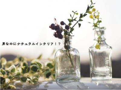 330_convert_20130328201543.jpg