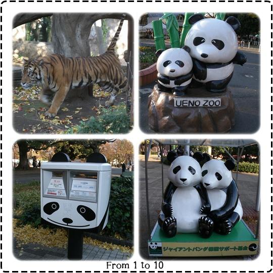201212上野動物園⑦