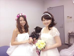makotoSHOW002_R.jpg