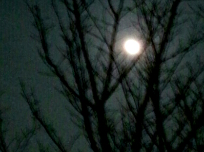 2013-02-25-21-39-13_deco.jpg