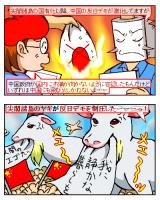 中国反日デモ、相次いで暴徒化。あの動物が業を煮やして…?