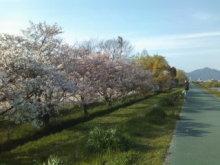 fumiのブログ-100408_1648~01_0001.jpg