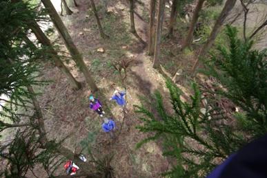 木の上からの光景