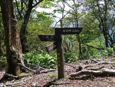 大室山の標識
