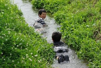 水路で泳ぐ