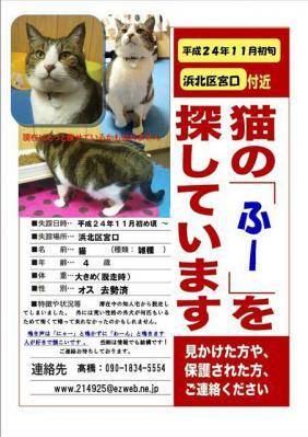ふーちゃんポスター