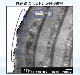 ナノファイ効果の模様