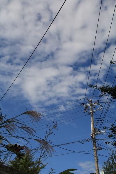 20110923 ススキと青空_R