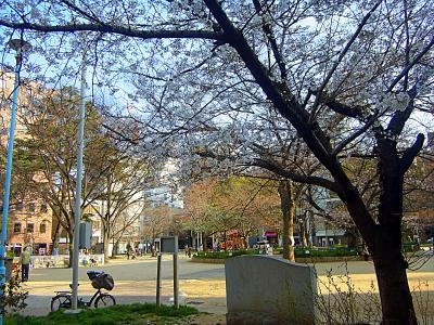 13003末の堀江公園