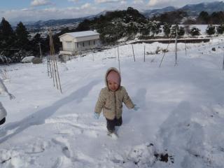 菜園で雪遊び