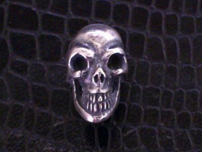 Skull_with_screw_001.jpg