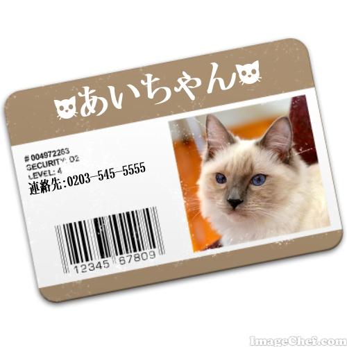 aichan_JPID.jpg