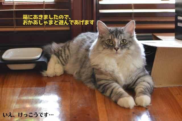 box_daisuki3.jpg