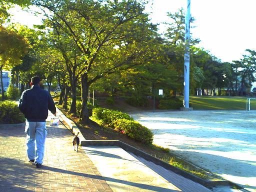 PAPA散歩